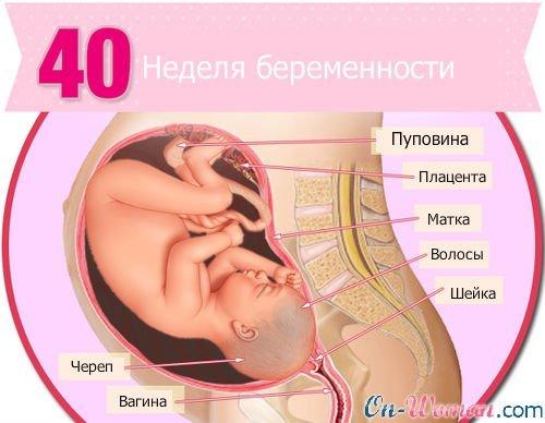 40 неделя беременности и секс