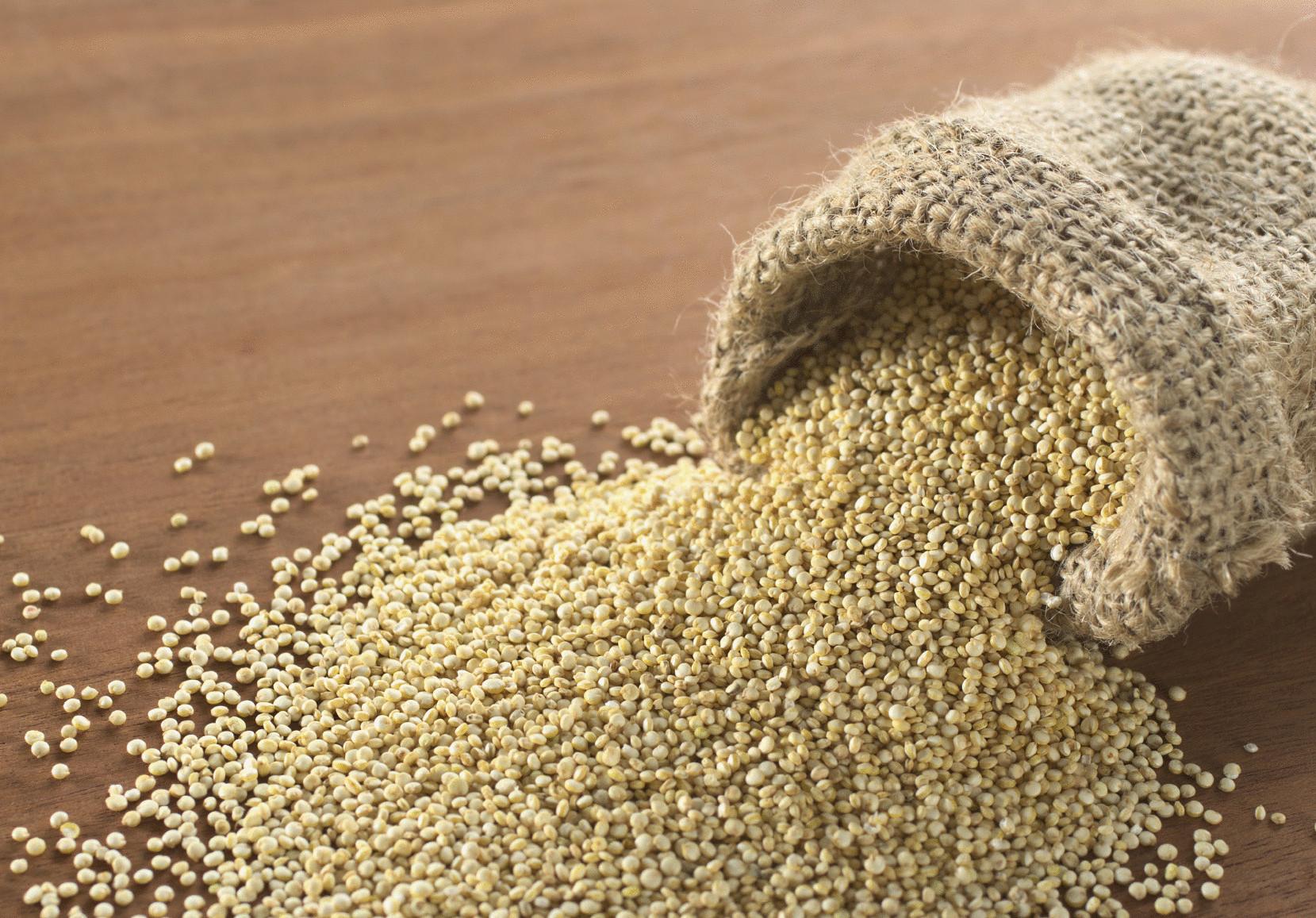производят зерно в фотографии что это водоем ноябре