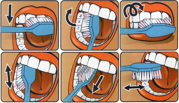 Техника очищения зубов