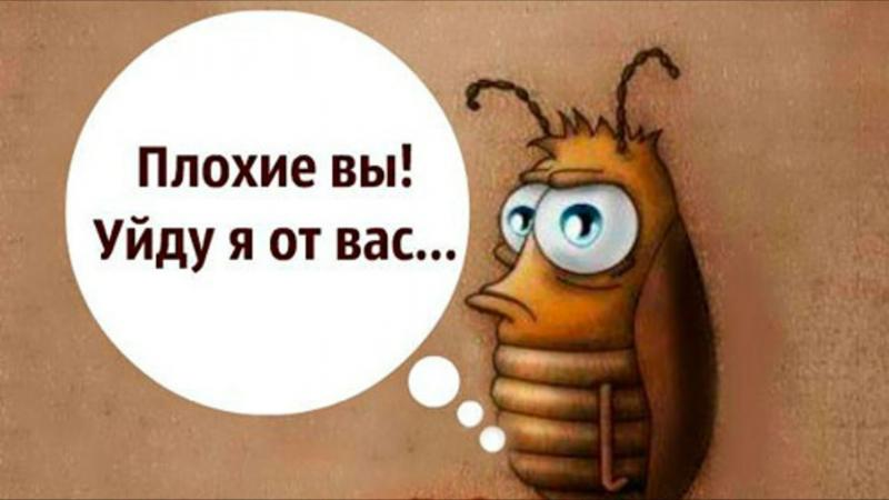 Анимационный таракан, подпись Плохие вы! Уйду я от вас...