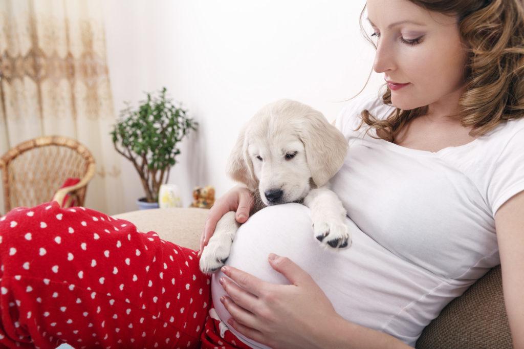 Беременная девушка и щенок