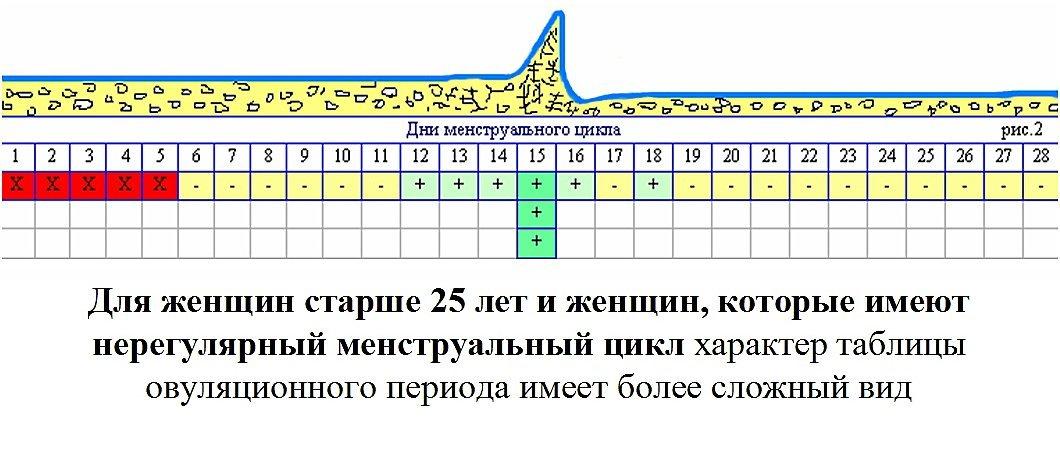 beremennost-cherez-den-posle-ovulyacii (2)