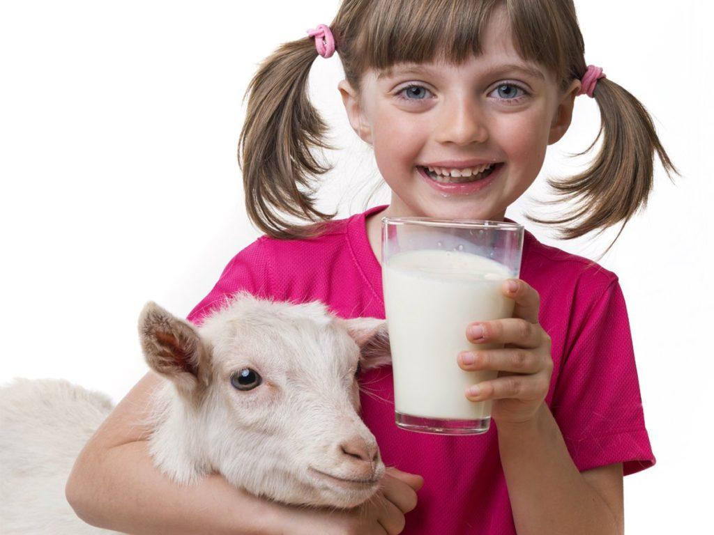 Девочка с козой держит стакан молока