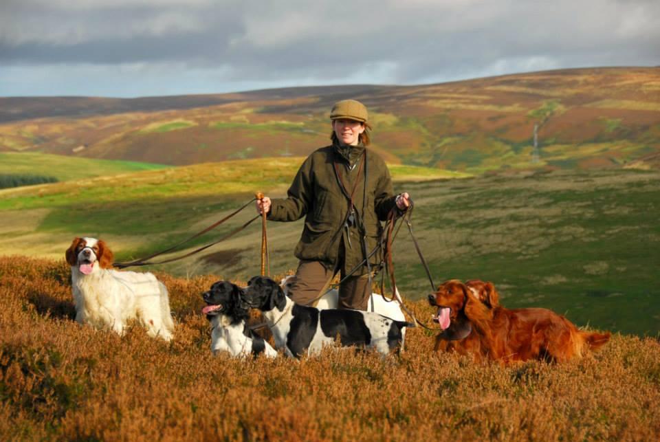 Девушка держит охотничьих собак на поводке
