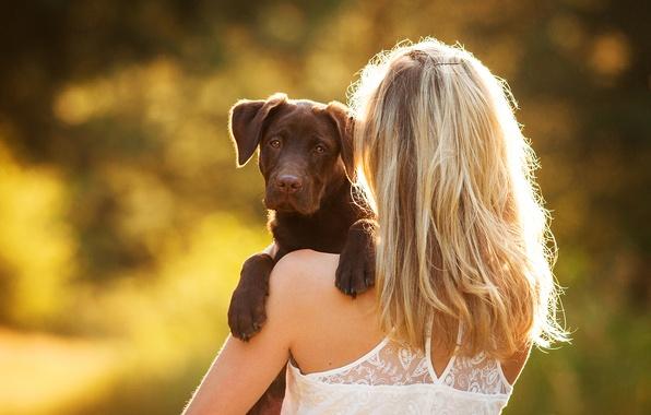 Девушка держит собаку