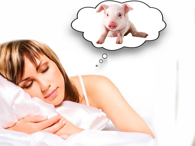 Девушке снится свинья