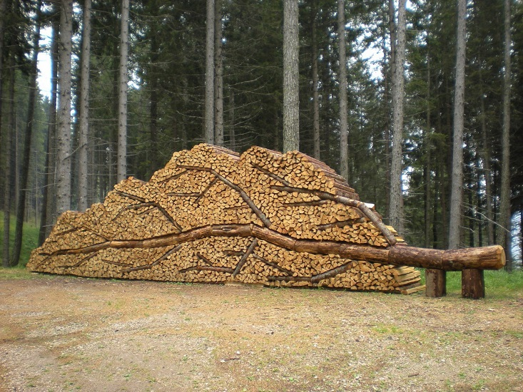 Дрова, сложенные в виде дерева