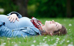 Фитотерапия при беременности