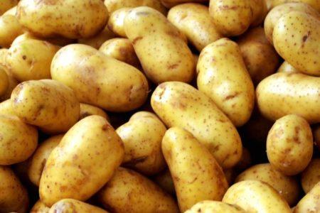 Сажать картошку во сне к чему снится 110