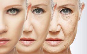 кожа на лице