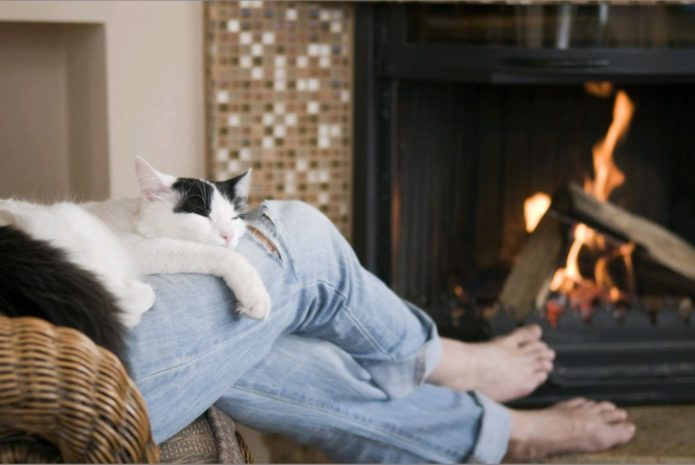 кошка спит в ногах
