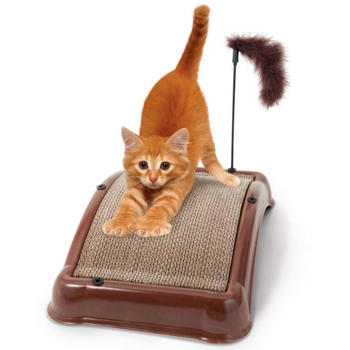 Котенок на горизонтальной когтеточке