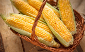 Початки кукурузы в корзинке