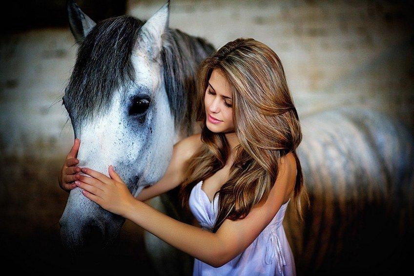 Лошадиный шампунь