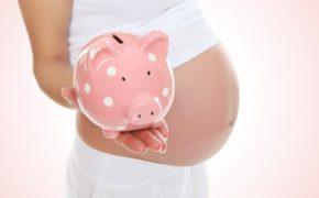 материнский капитал в 2013