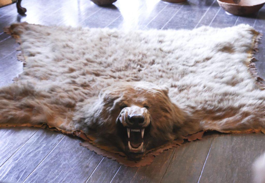 Медвежья шкура на полу