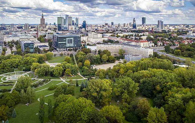 городские зеленые зоны