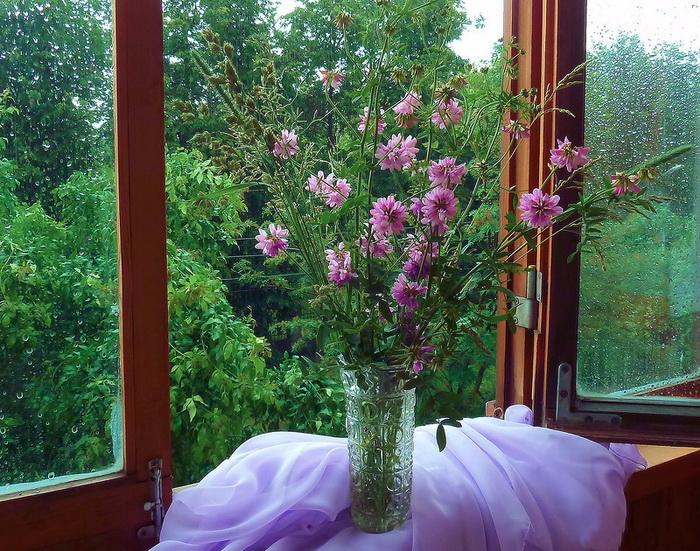 Открытое окно с цветами на подоконнике