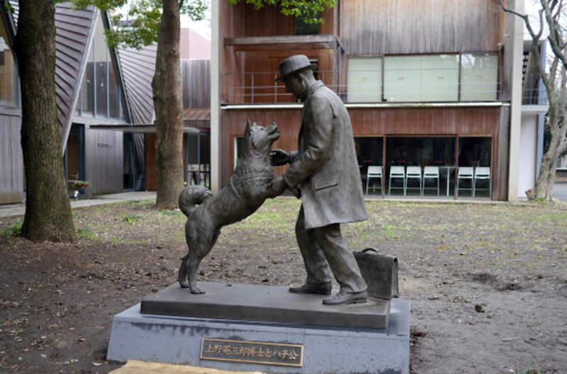 Памятник Хатико и профессору Уэно