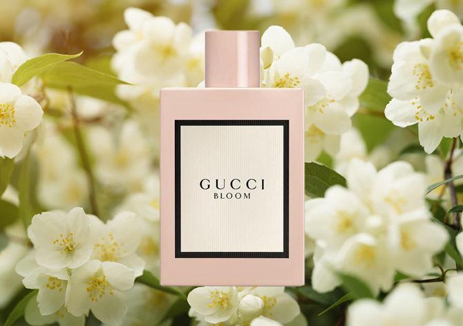 парфюмерные ингредиенты жасмин