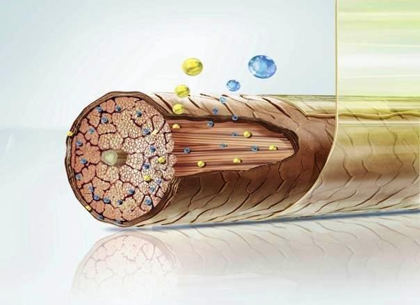 Покрытие волоска защитной плёнкой