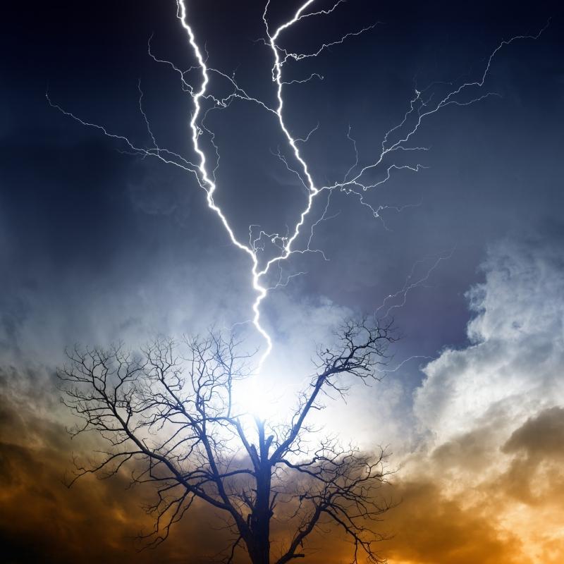 попадание молнии в дерево