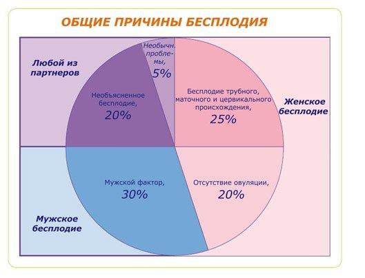 fitoterapiya-narusheniy-spermatogeneza