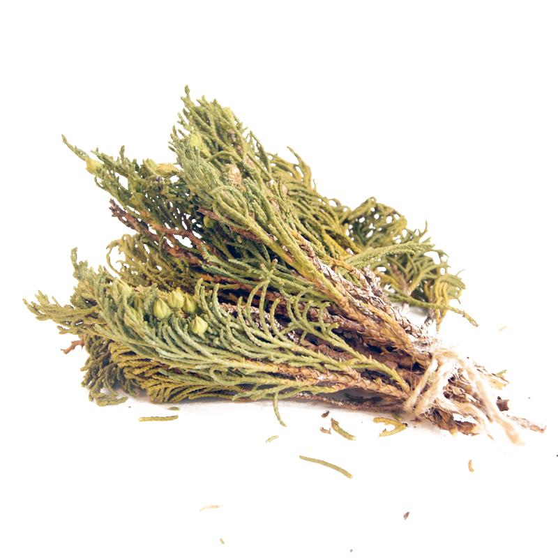 Пучок трав