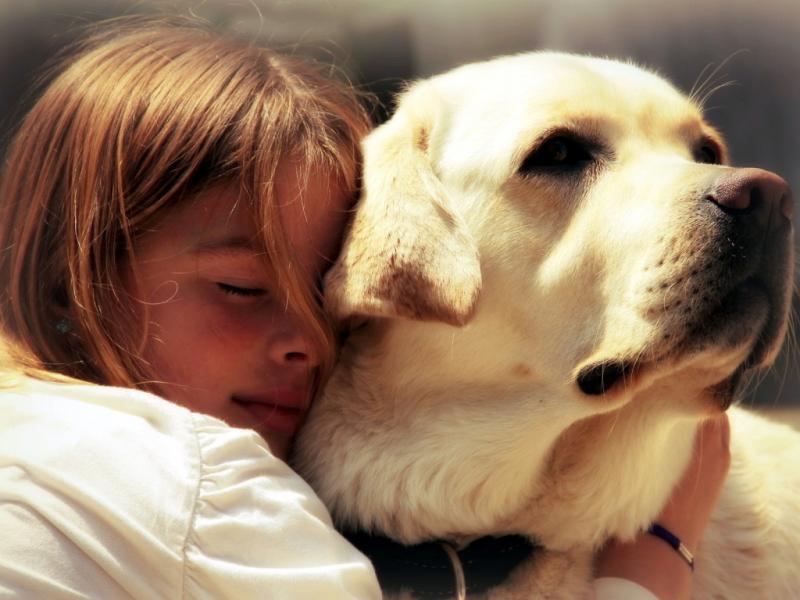 Ребёнок и собака