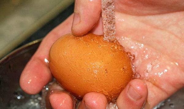Рука с куриным яйцом