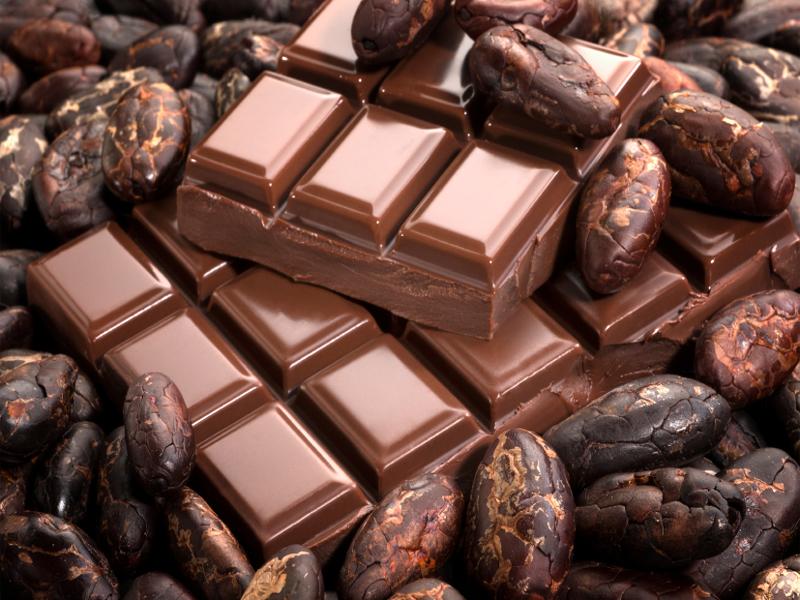 Шоколад среди какао-бобов