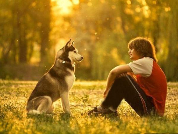 Собака сидит рядом с парнем
