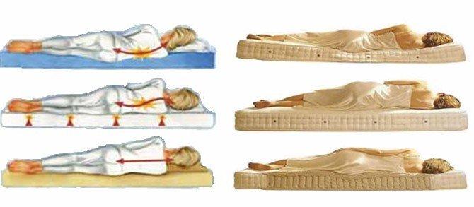 spine_mattress