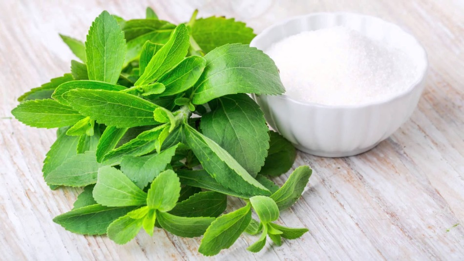 Листья стевии и пиала с сахаром