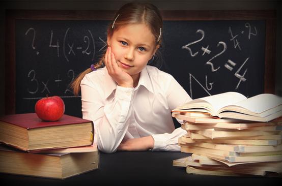 школьное образование недостатки
