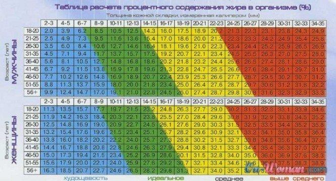 сколько жира в твоем оргнизме если ты женщина или мужчина, смотри таблицу