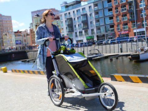 Мультиспортивные коляски Thule