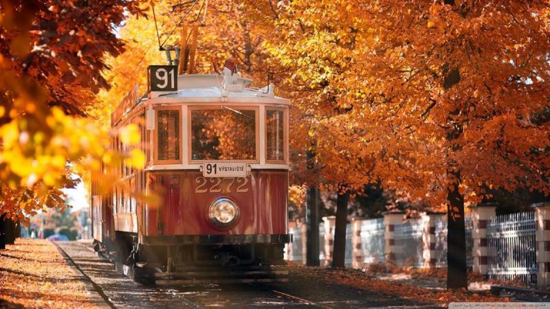 Трамвай в осеннем пейзаже