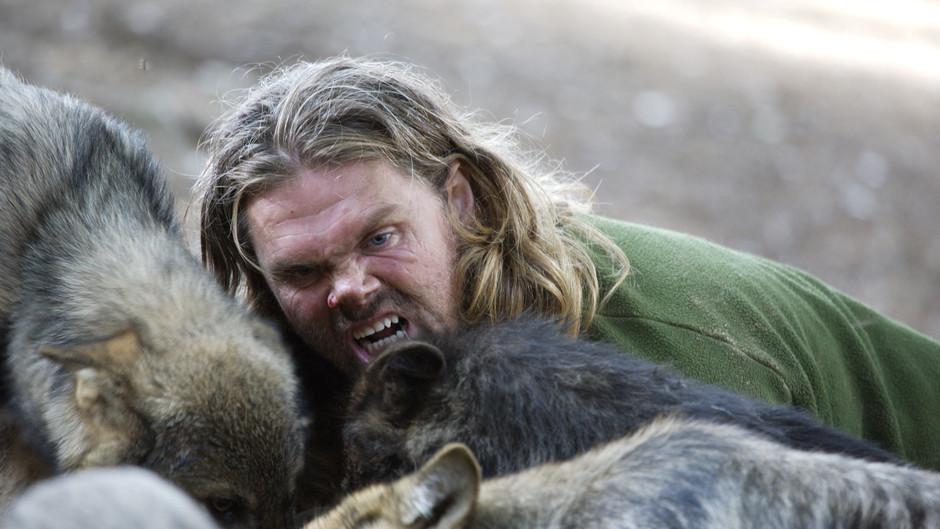 В схватке с волками