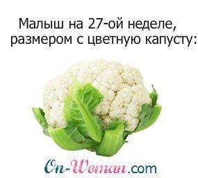 Ваш ребенок на 27 неделе размером с цветную капусту