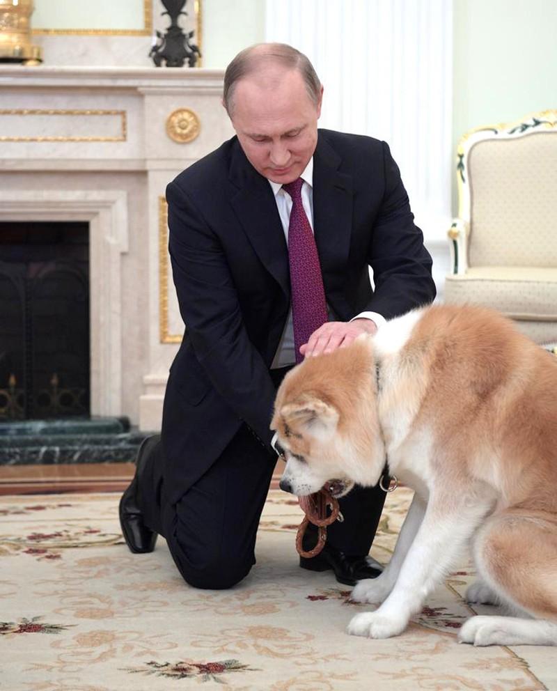 Владимир Путин и Юмэ