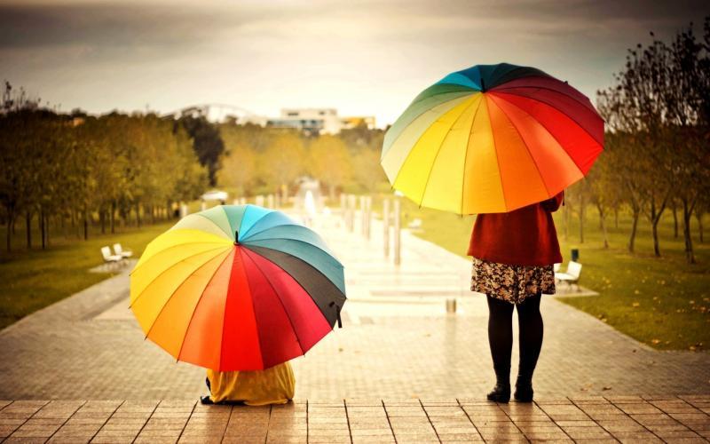 Сонник покупать зонтик